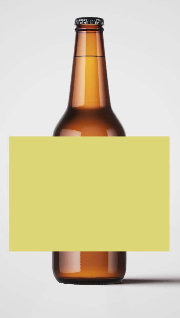 Bière P'tite Maiz Brew T'Aiz' #03